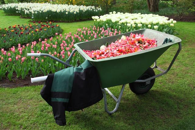 création de jardin lot et garonne