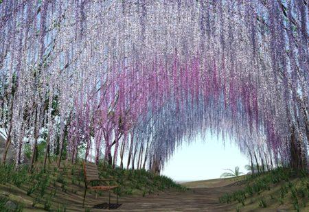 jardin japonais haute garonne