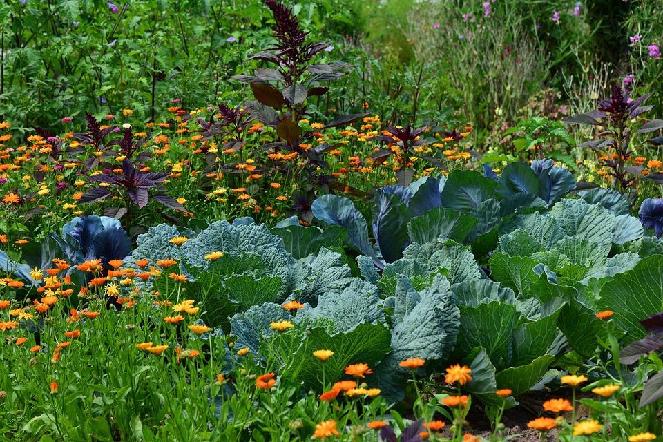 jardin gourmand villeneuve-sur-lot