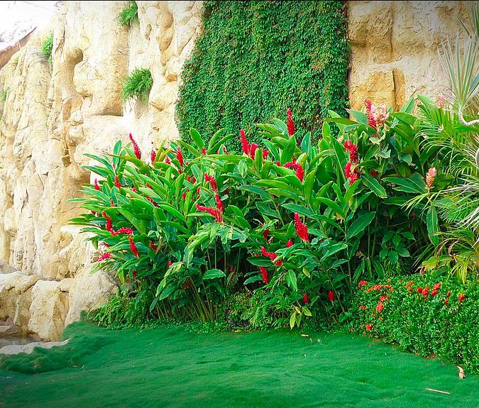parcs et jardins botaniques